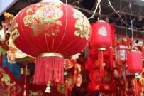 New Yorkers flocked to Chinatown for Chinese New Year.